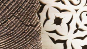 harmonia natury i detalu ornamentu mandali